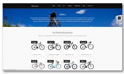 Screen Fluid Web Development Bike Shop
