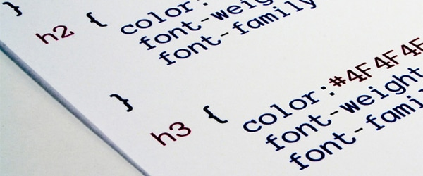 Why do I need a web developer?